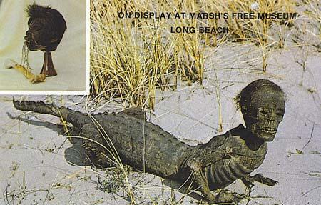 Jake - huyền thoại người cá sấu