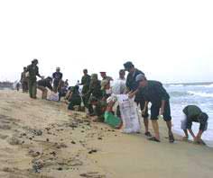 Biển Thừa Thiên - Huế và Quảng Trị bắt đầu bị ảnh hưởng