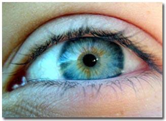 Phát hiện hệ thống cảm nhận ánh sáng thứ hai trong mắt người