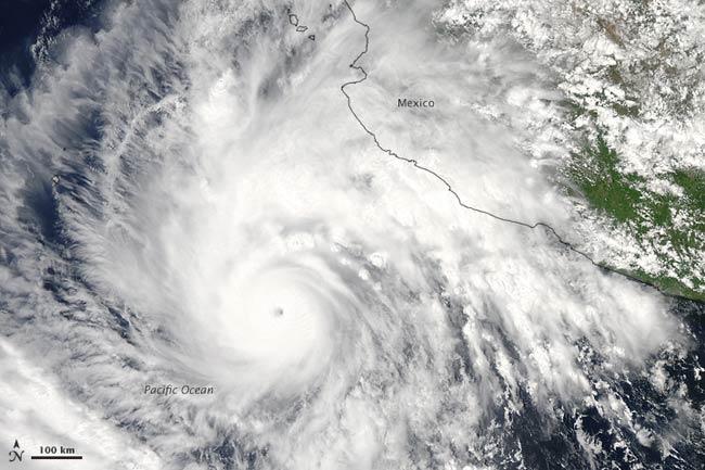 Tại sao bão Thái Bình Dương hiếm khi tấn công nước Mỹ?