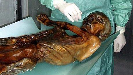 Giả mã thành công ADN của xác ướp cổ nhất thế giới