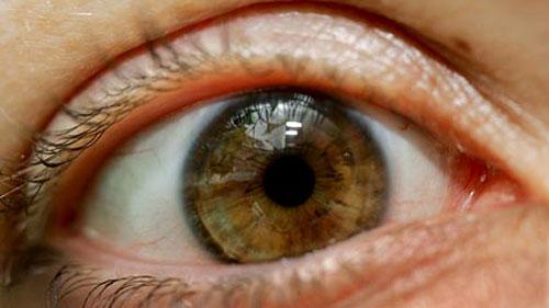 """Công nghệ nhận diện """"vân mắt"""""""
