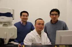 Công cụ nghiên cứu tế bào mới có thể góp phần hé lộ các bí mật của bệnh tật