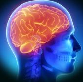 Thiết bị cấy ghép não có ích cho bệnh nhân Parkinson