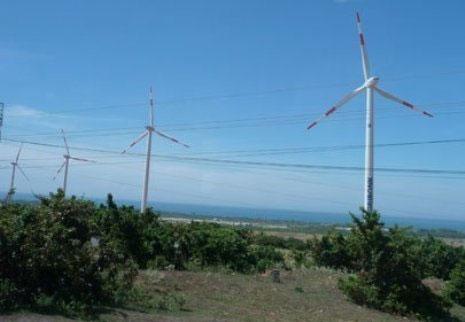 Khánh thành nhà máy điện gió lớn nhất Đông Nam Á