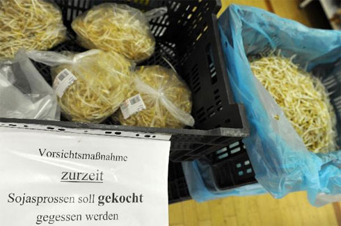 Tìm thấy khuẩn E.coli chết người trên giá đỗ