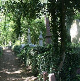 Bí ẩn ma cà rồng ở nghĩa trang Highgate