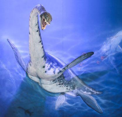 Phát hiện hóa thạch loài rắn đầu rồng