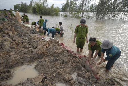Vỡ nhiều tuyến đê ở đồng bằng sông Cửu Long