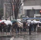 Nhật Bản: Thời tiết càng xấu, người tự tử càng nhiều