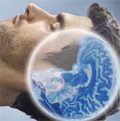 Giấc ngủ giúp loại bỏ chất độc trong não