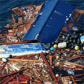 Đảo rác lớn gấp đôi diện tích đất liền VN sắp cập bến Mỹ