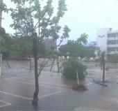 Video: bão Haiyan đổ bộ, gây ngập lụt tại Trung Quốc