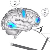 Não nhân tạo có khả năng đếm và suy luận