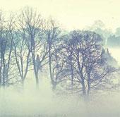 Sương mù là gì? Tại sao có sương mù?