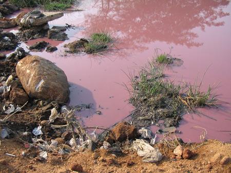 10 hiểm họa lớn nhất đối với môi trường và con người