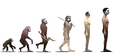 Quá trình tiến hóa của loài người đã kết thúc