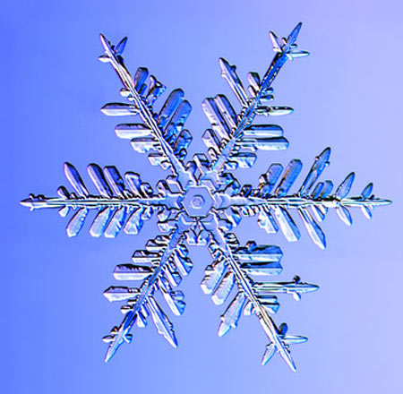 Những hình dạng kỳ lạ của bông tuyết
