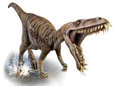 Tạo giống gà mới mang gen khủng long