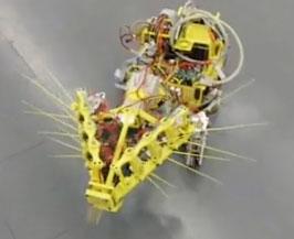Robot cứu nạn bằng râu