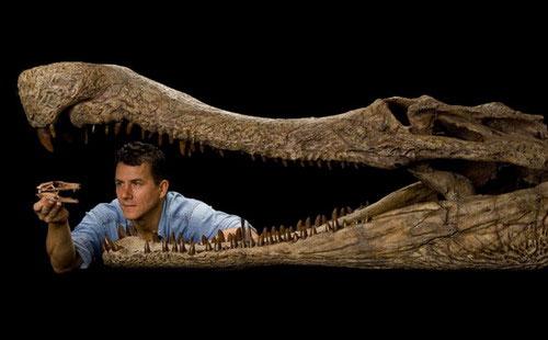 Phát hiện hóa thạch 5 loài cá sấu 100 triệu năm
