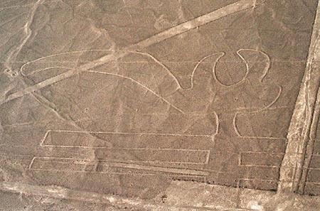 Giải mã các hình vẽ thần bí tại Peru