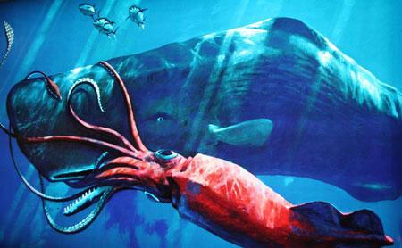 'Quái vật biển' không hung hãn