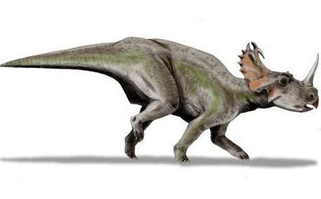 Phát hiện nghĩa địa khủng long lớn nhất thế giới