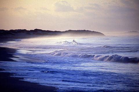 Vẻ đẹp hoang sơ của đảo Socotra