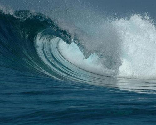 Những cơn sóng thần không thể dự báo trước