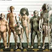 Sự trả thù dai dẳng của người Neanderthal