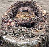 Con tàu bí ẩn trôi dạt vào bờ biển nước Mỹ