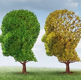 """7 kỹ năng ghi nhớ giúp bạn có trí thông minh """"tuyệt đỉnh"""""""