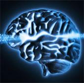 Cấy chất lỏng vào não người để thông minh hơn