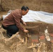 Trung Quốc khai quật mộ bà của Tần Thủy Hoàng