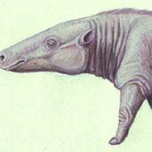 Loài động vật thời tiền sử mang tên Mick Jagger