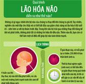 Bộ não bạn già đi như thế nào?