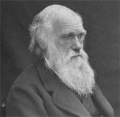 Ngày 12/2: Charles Darwin - Thuyết tiến hóa và chọn lọc tự nhiên