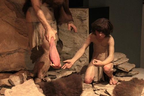 Nguyên nhân khiến người Neanderthal tuyệt chủng