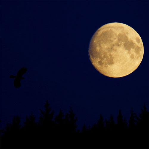 Cú hat trick huyền thoại của Mặt trăng