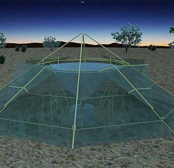 Thu thập nước trong không khí để trồng cây ở sa mạc