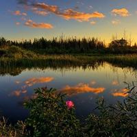 Vườn quốc gia Everglades - Hợp chủng quốc Hoa Kỳ