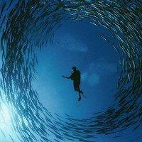 Bảo vệ đại dương để bảo vệ bầu khí quyển