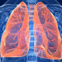 Hút thuốc lá trên 5 năm, hãy làm theo 5 cách này để cứu phổi