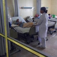 Cúm heo làm 14 người ở Costa Rica tử vong