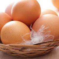 Không nên ăn trứng gà khi đang cảm sốt