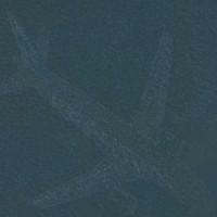 Giải mã bí ẩn máy bay nằm dưới hồ nước
