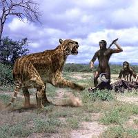 Loài mèo ăn thịt người từng khiến con người sợ khiếp vía