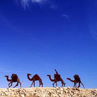 Con đường hương liệu và các thành phố hoang mạc vùng Negev