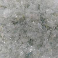 Phát hiện vi khuẩn có khả năng phân hủy nhựa